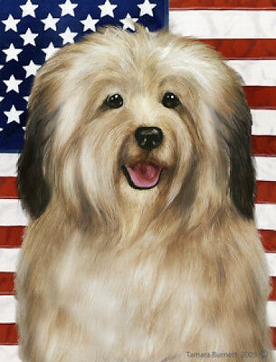 Large Indoor/Outdoor Patriotic II Flag - Cream Havanese 32097