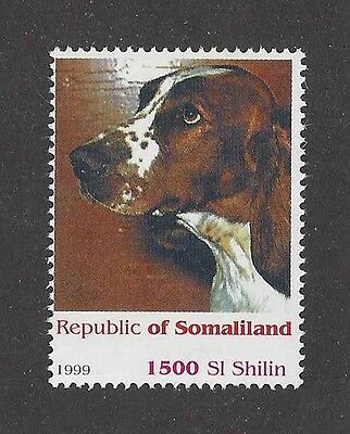 Dog Art Head Portrait Postage Stamp WELSH SPRINGER SPANIEL Somaliland 1999 MNH