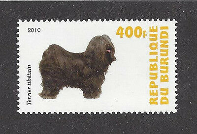 Dog Art Photo Full Body Study Postage Stamp TIBETAN TERRIER Burundi 2010 MNH
