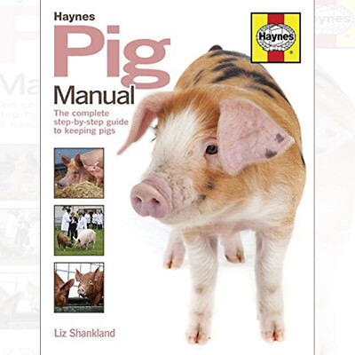 Pig Manual: The Complete Step-by-Step Guide to Keeping Pigs By Liz Shankland UK