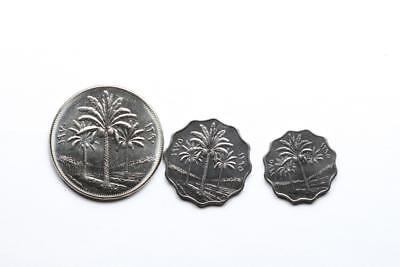 FAO / F.A.O. Iraq  - lot of 3 coins - uncirculated
