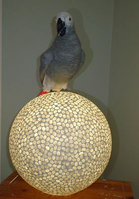 AFRICAN GREY PARROT on MOSAIC MOTHER OF PEARL  'GLOWING'  ORB
