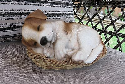 JACK RUSSELL PUPPY IN WICKER BASKET  Figurine Decoration Gift Resin 6.5 NEW DOG
