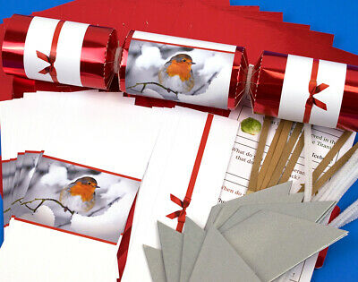 8 Winter Robin Make & Fill Your Own Christmas Crackers Kit
