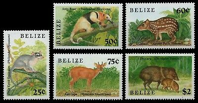 Belize 1989 - Mi-Nr. 1014-1018 ** - MNH - Wildtiere / Wild animals