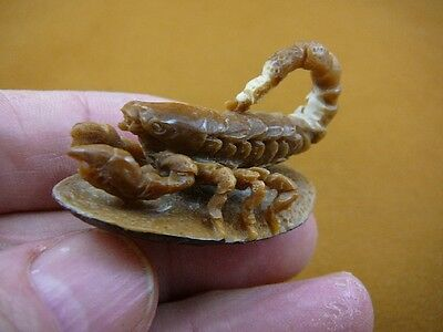 (tb-scorp-3) little tan scorpion Tagua NUT palm figurine Bali carving Scorpions