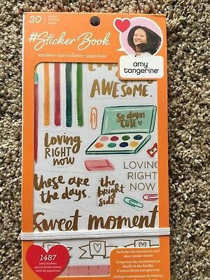 American Crafts Sticker Book Designed By AMY TANGERINE - 1487 Pieces 344862 NEW