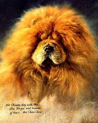 Chow Chow - Vintage Dog Art Print - Poortvliet
