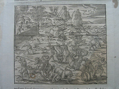 Holzschnitt aus André Thevet: Kampf wilde Tiere 1575/Engraving Fight wild Animal