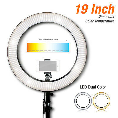 "19"" Photo Video Continuous Ring Light Dual Color Dimmable with Cellphone holder"
