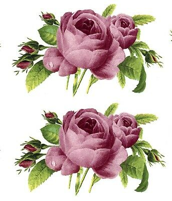 "4 Pink Rose Flower 3"" X 1-5/8""  Waterslide Ceramic Decals Bx"