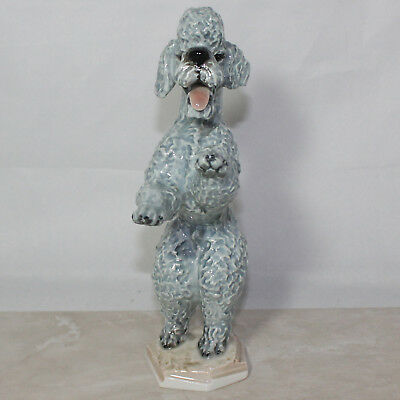 """Rosenthal Porcelain Dog Grey Poodle Standing #5155, 8"""" Tall, No Box, Chipped"""