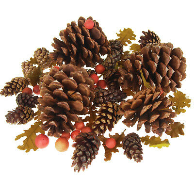 Dried Scented Pine Cones Natural Forms with Red Berries, 40-Piece