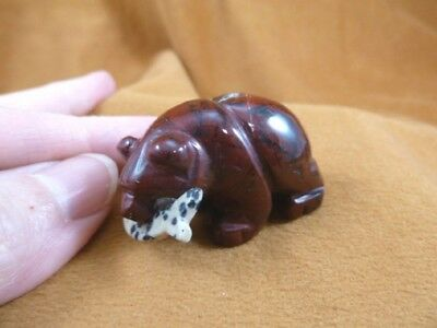 (Y-BEA-BF-575) red Jasper BEAR with Fish gemstone carving FIGURINE I love bears