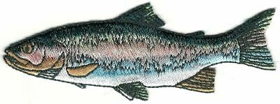 Realistic Rainbow Trout Game Sport Trophy Fish Embroidery Patch Facing Left