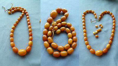 WPNO 老琥珀 23,0 g natural amber necklace olive Butterscotch Bernsteinkette Collier