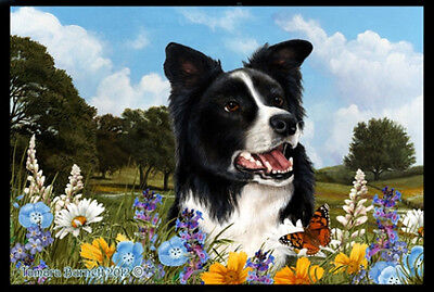 Indoor/Outdoor Summer Floor Mat - Border Collie (TB) 39030