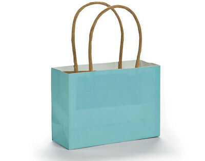 12 Small Light Blue Kraft Bags for Gifts or Crafts - 115mm Tall