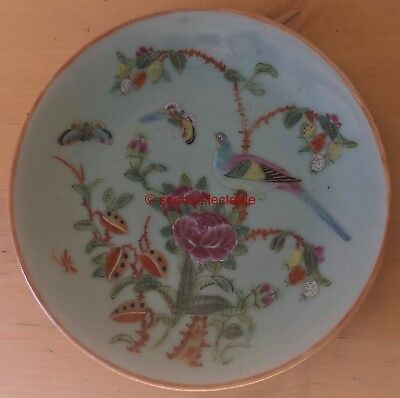 """SIGNED antique CHINESE CELADON 7.5"""" BIRDS & BUTTERFLIES in TREE pattern PLATE"""