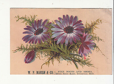 W P Marsh & Cp Boots & Shoes Springfield MA Purple Flowers Vict Card c1880s