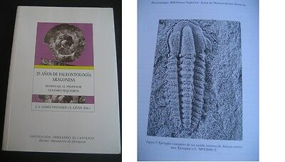 25 Years Of Paleontology Aragonese. Per Gamez And Linan 1999. Fossils, Dinosaurs