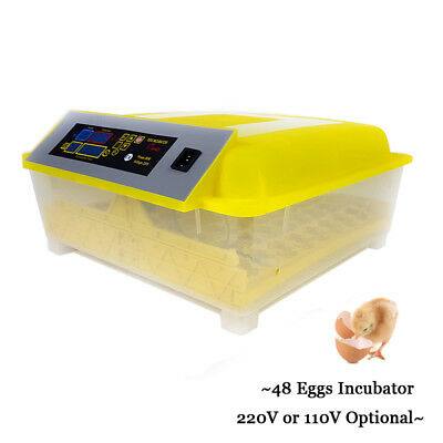 220V Automatic 48 Eggs Incubator Temperature Controller 80W Digital Incubator