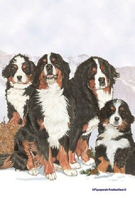 Large Indoor/Outdoor Pipsqueak Flag - Bernese Mountain Dog Group 49523