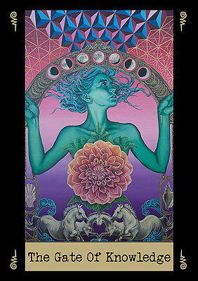 Visionary Cards Deck Tarot Deck Oracle by Noa Knafo, self published, amazing!!