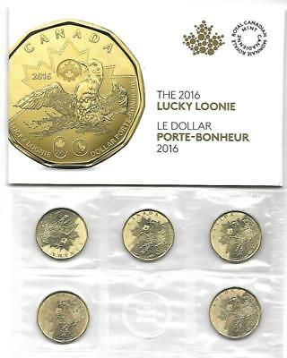 />300packs LUCKY LOONIE COIN PACK $5 CANADA 2016 Rio Brazil Olympics Paralympics