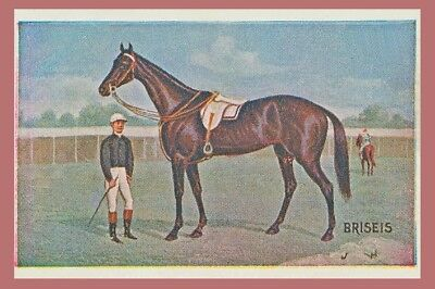 BRISEIS 1876 MELBOURNE CUP Winner - painting modern Digital Art Postcard
