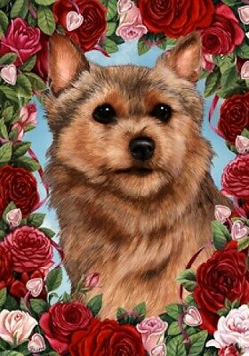 Large Indoor/Outdoor Roses Flag - Norwich Terrier 19152