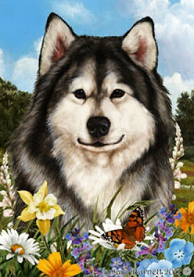 Large Indoor/Outdoor Summer Flag - Alaskan Malamute 18147