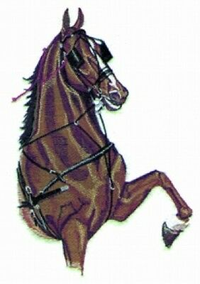 Large Embroidered Zippered Tote - Harness Horse BT2338