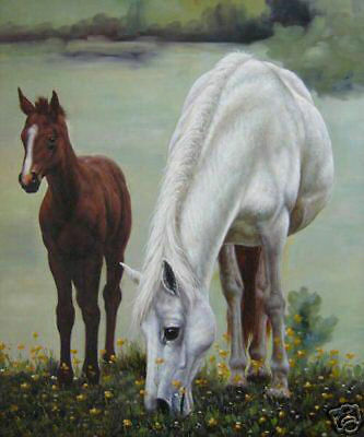 LMOP81 100% hand-painted MODERN OIL PAINTING on CANVAS wall ART:two animal horse