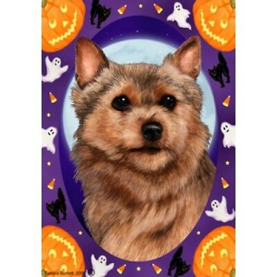 Garden Indoor/Outdoor Halloween Flag - Norwich Terrier 121521