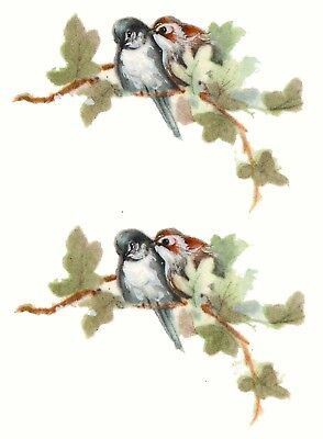 "Lovebirds Love Birds on Branch 1-3/4"" X 1""  Waterslide Ceramic Decals Ox"