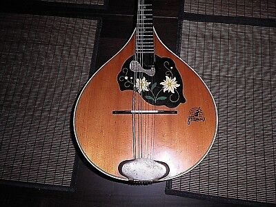 Mandoline von Framus Made in Germany Vintage!