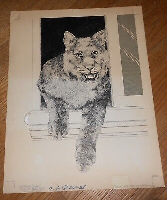 Original Ink Drawing on Illustration Board Mountain Lion by Cynthia A Belcher