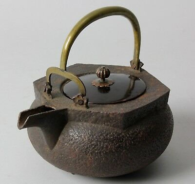 Japanese Iron Tea pot Choushi  P23