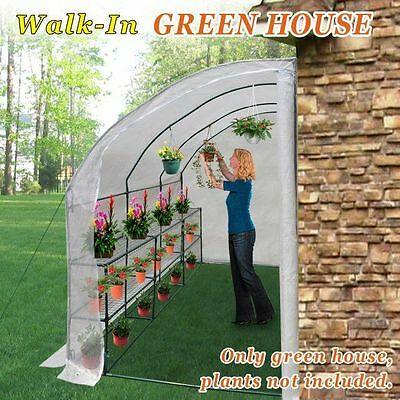Large Walk-In Wall Greenhouse 10x5x7'H w 3 tiers/6 Shelves Gardening