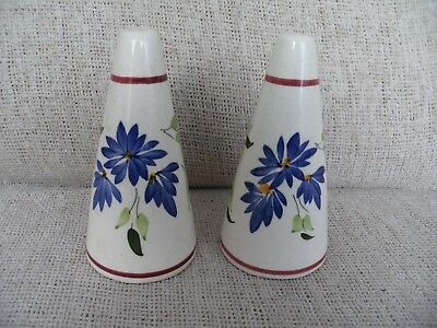 Vintage Retro Conical Salt And Pepper Pots Blue Flowers Probably Toni Raymond