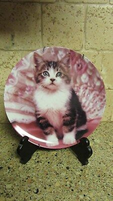 "Crestley Collection ""Perfectly Posed"" Picture Purrfect Cat Plate & Hanger"