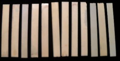"""12 Antique Loose Piano Key Tops Cream Colored 4"""" Long 1/2"""" Wide"""