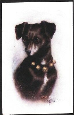 Vintage Lithograph 1907 Rat Terrier Dog Puppy Leather Collar Bells Old Postcard