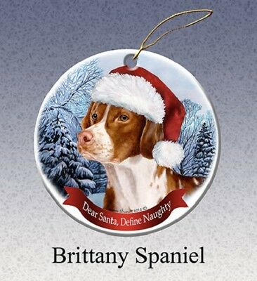 Define Naughty Ornament - Brittany