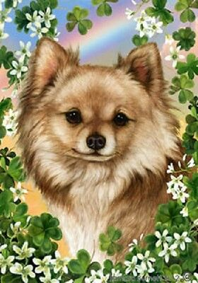 Garden Indoor/Outdoor Clover Flag - Longhaired Chihuahua 311451