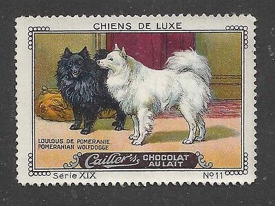 1931 France Nestle Cailler Kohler Dog Art Trade Card POMERANIAN LOU-LOU DOG