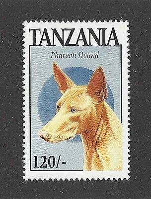 Dog Art Head Study Portrait Postage Stamp PHARAOH HOUND Tanzania 1994 MNH