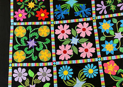 Unique Floral Hand Applique QUILT TOP - Crisp Scrap quilt block border details !