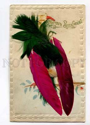 3018452 Color PARROT Real FEATHERS vintage RUSSIAN EASTER RARE